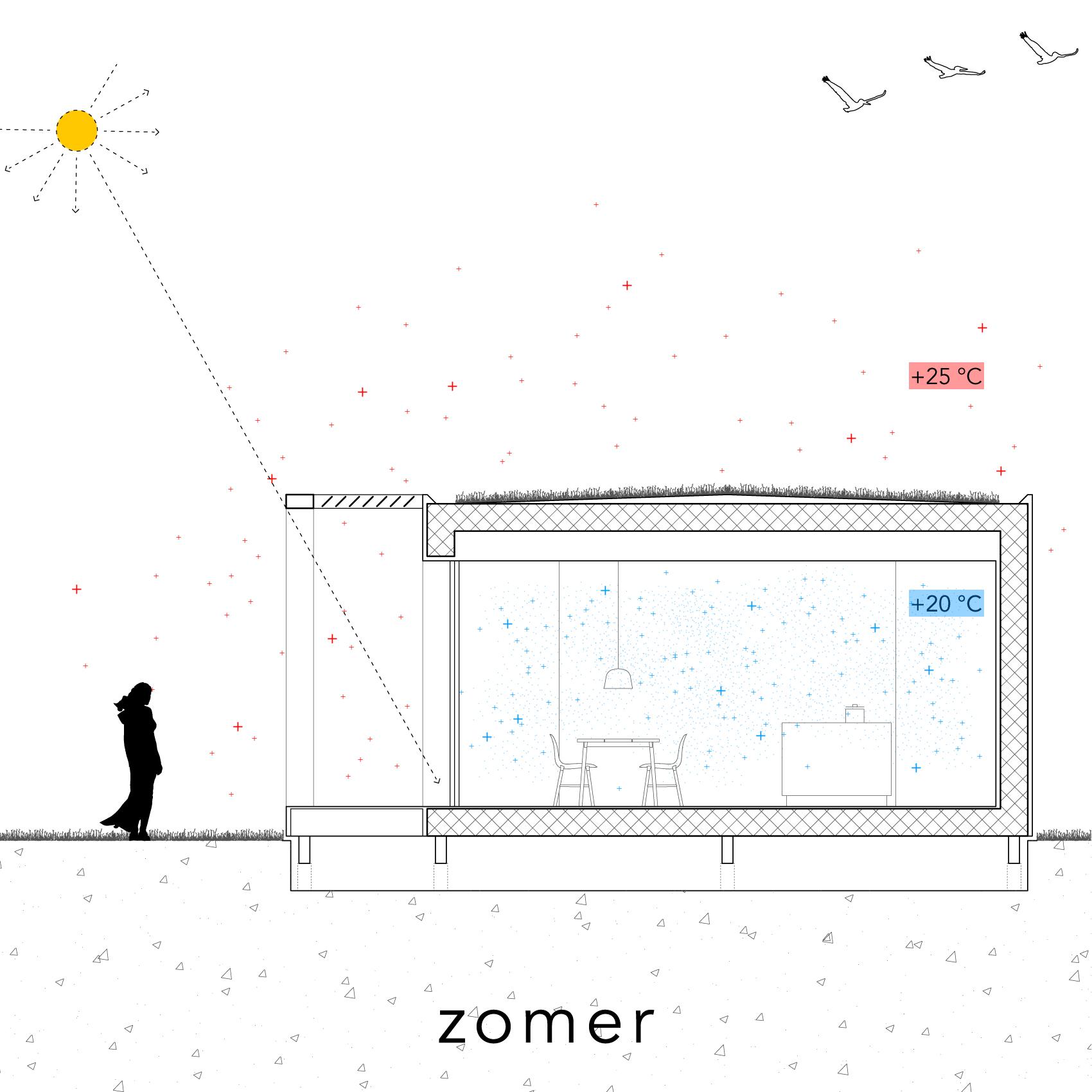 Modle - Zon - zomer